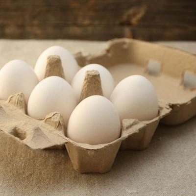 Kananmuna M-XL, luomu, Nikula